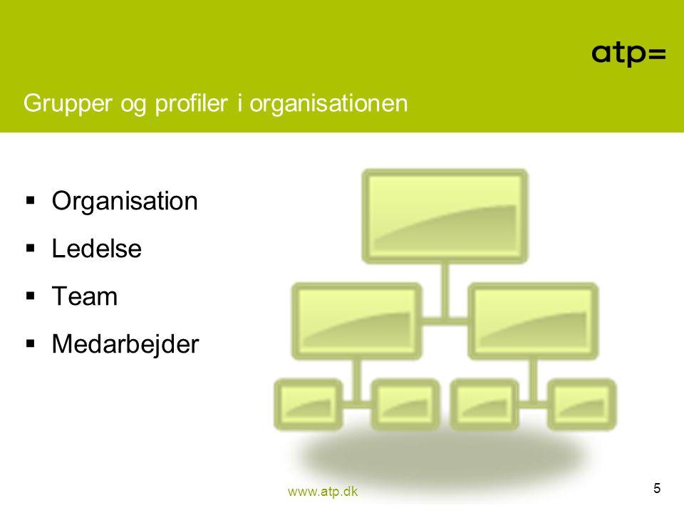 Grupper og profiler i organisationen