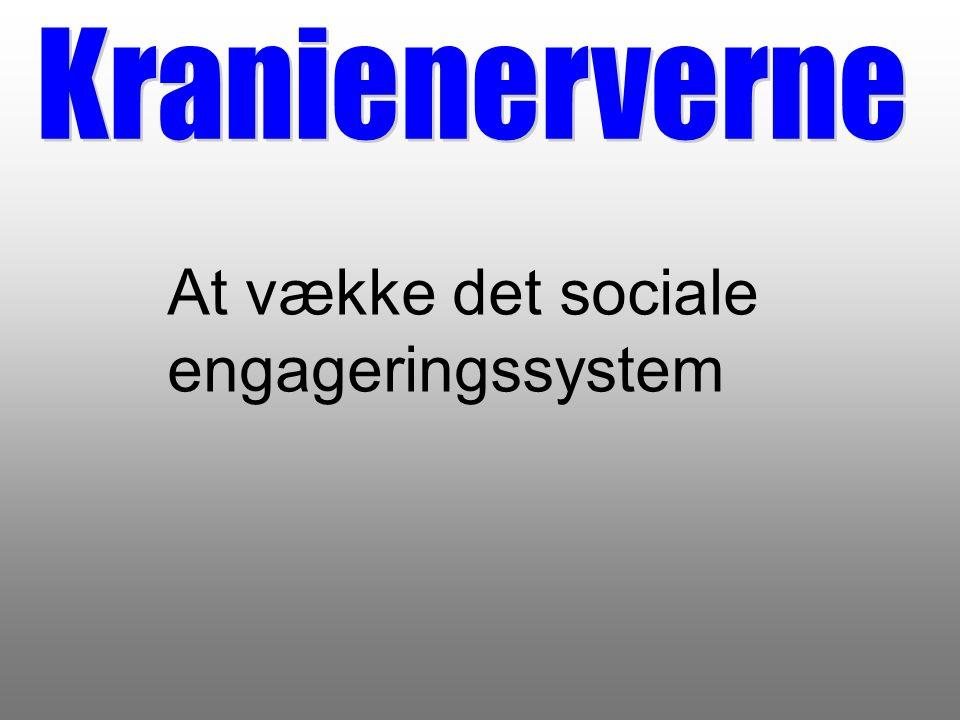 At vække det sociale engageringssystem