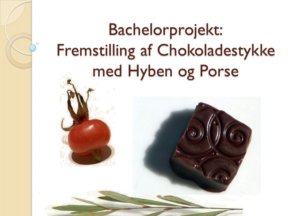Bachelorprojekt: Fremstilling af Chokoladestykke med Hyben og Porse