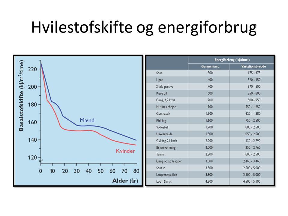 Hvilestofskifte og energiforbrug