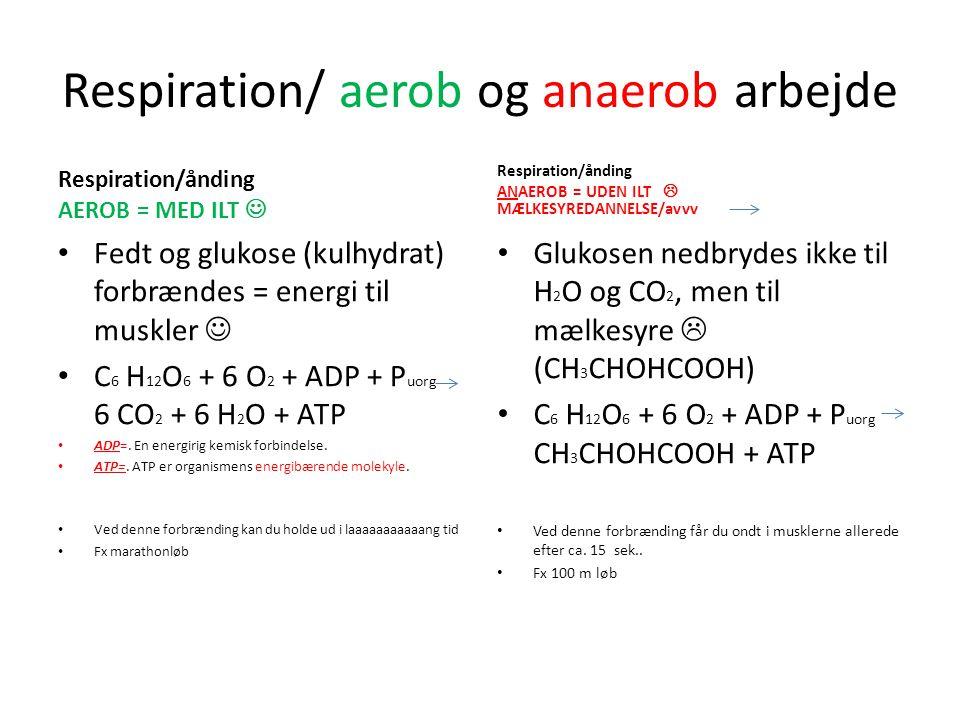 Respiration/ aerob og anaerob arbejde