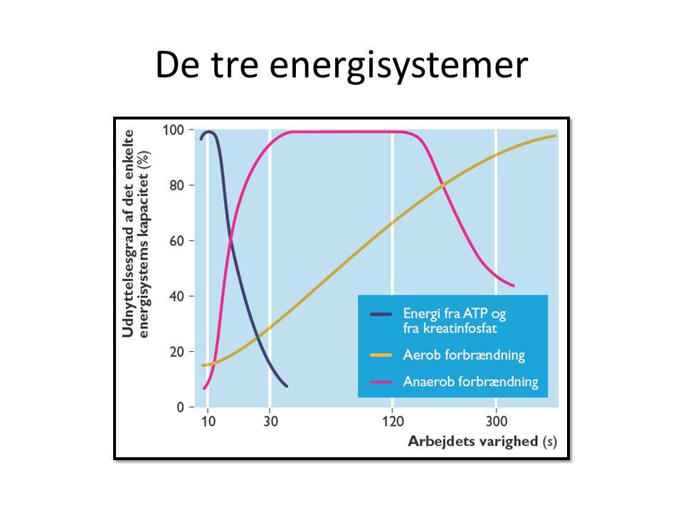 De tre energisystemer