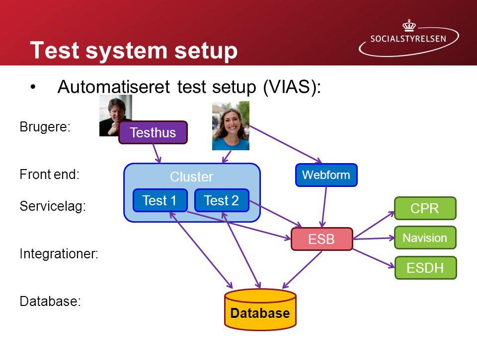 Test system setup Automatiseret test setup (VIAS): Brugere: Front end: