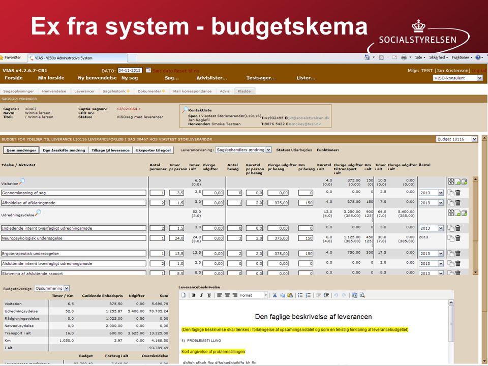 Ex fra system - budgetskema