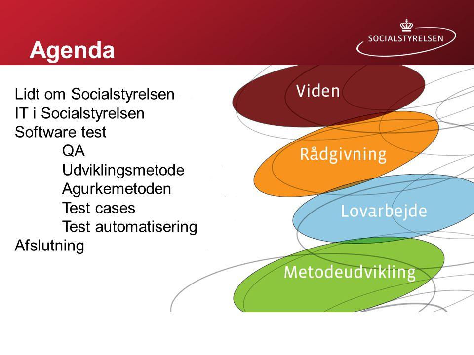 Agenda Lidt om Socialstyrelsen IT i Socialstyrelsen Software test QA