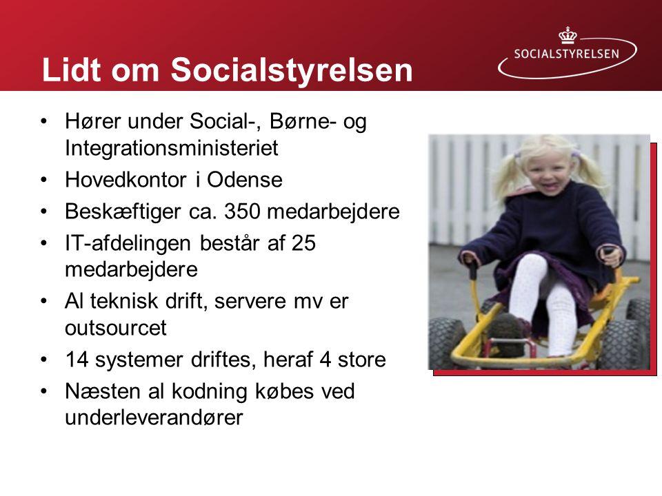 Lidt om Socialstyrelsen