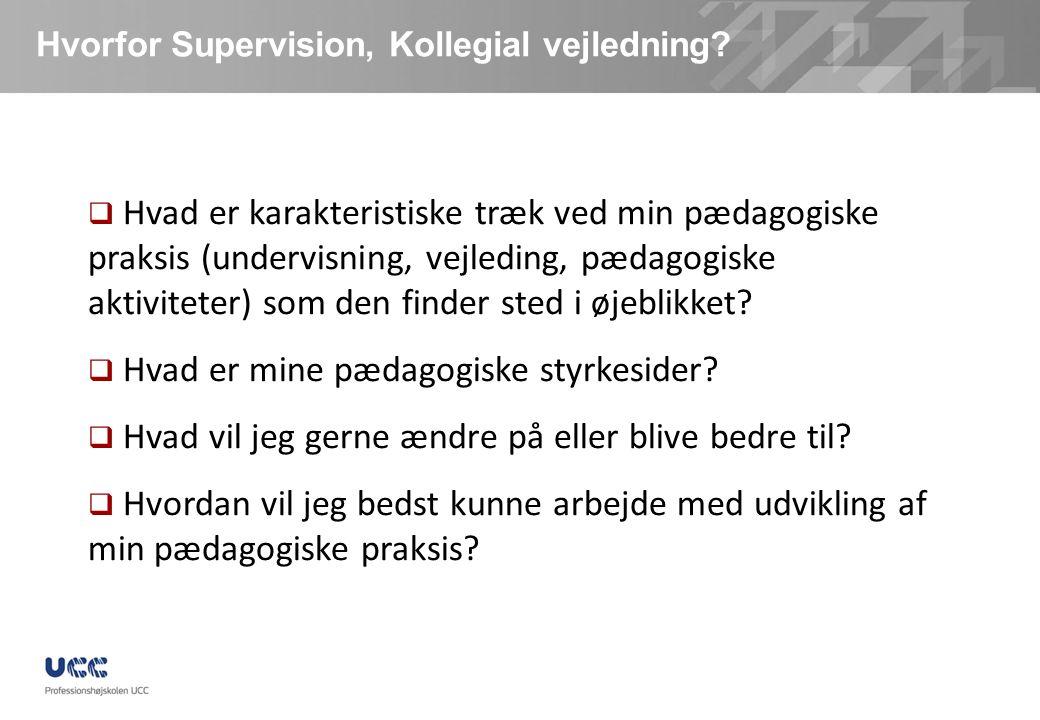Hvorfor Supervision, Kollegial vejledning