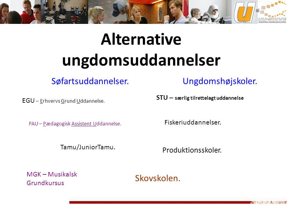 Alternative ungdomsuddannelser