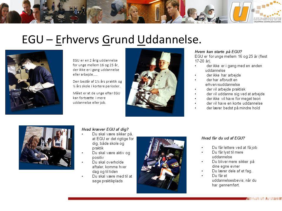 EGU – Erhvervs Grund Uddannelse.