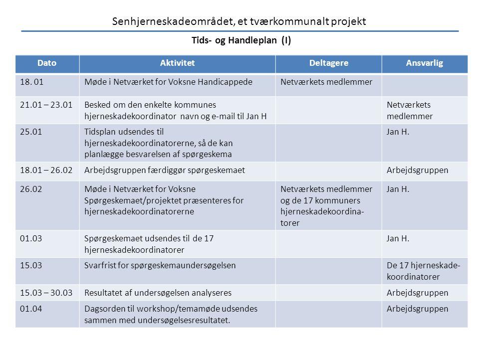 Tids- og Handleplan (I)