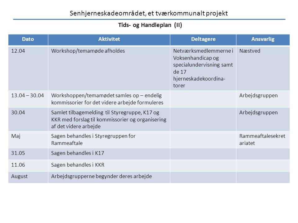 Tids- og Handleplan (II)
