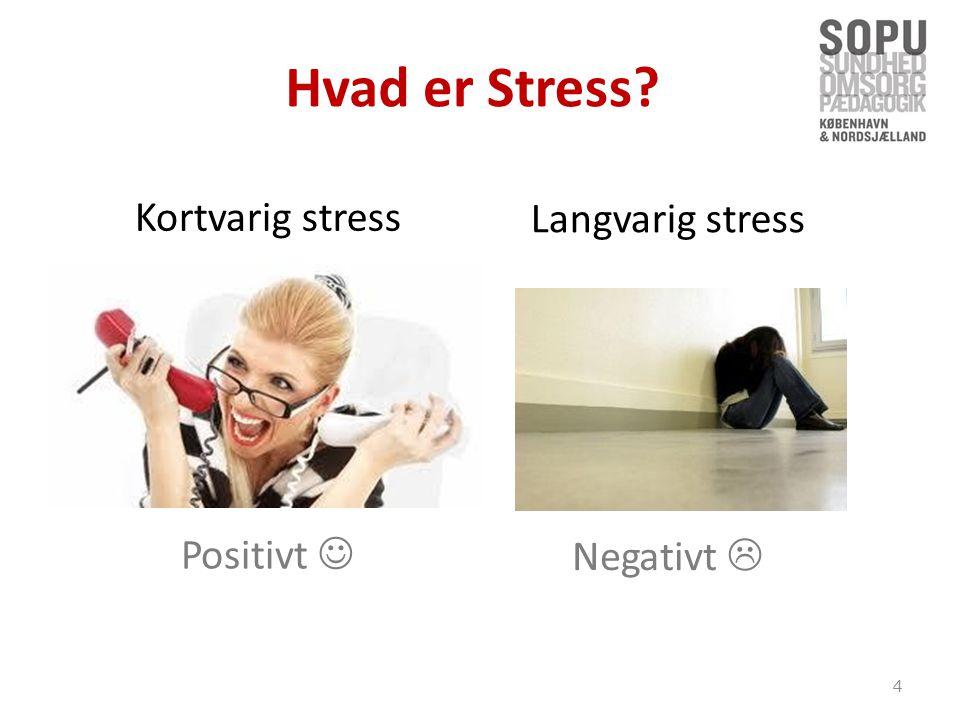 Hvad er Stress Kortvarig stress Langvarig stress Positivt 
