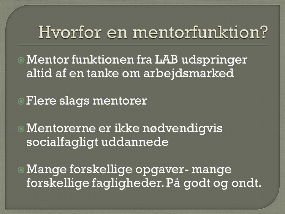 Hvorfor en mentorfunktion
