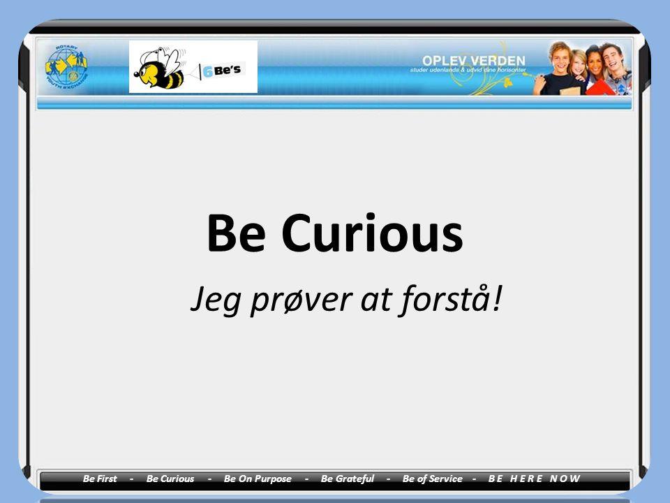 Be Curious Jeg prøver at forstå!