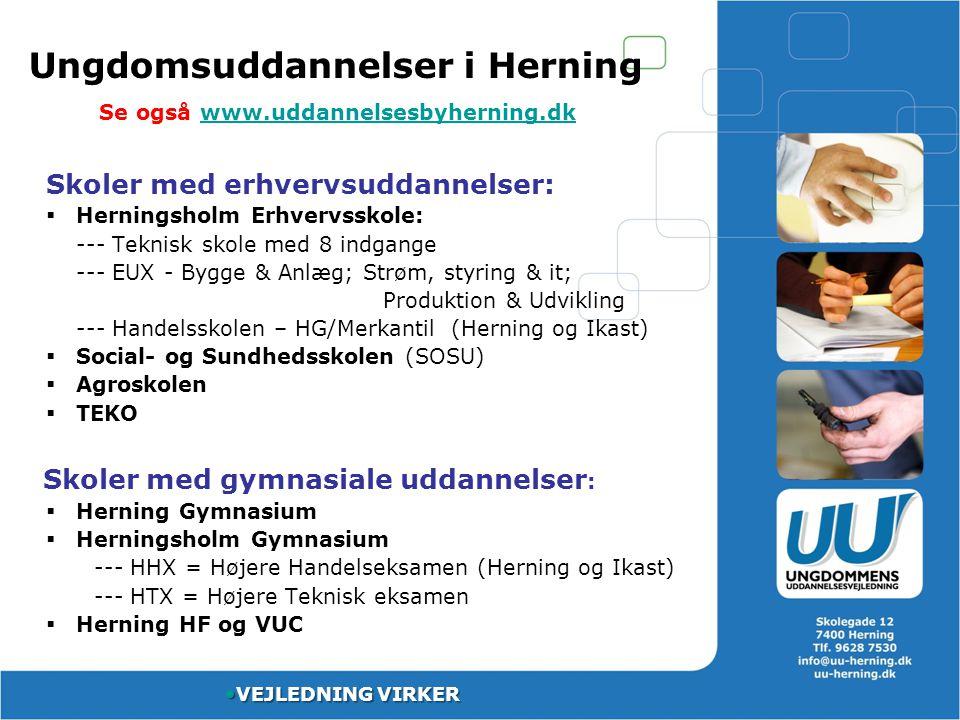 Ungdomsuddannelser i Herning Se også www.uddannelsesbyherning.dk