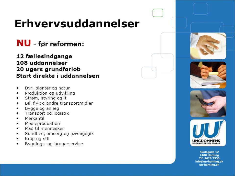 Erhvervsuddannelser NU - før reformen: 12 fællesindgange
