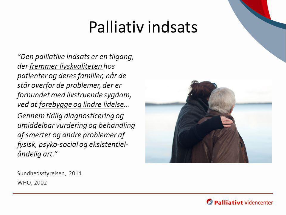 Palliativ indsats
