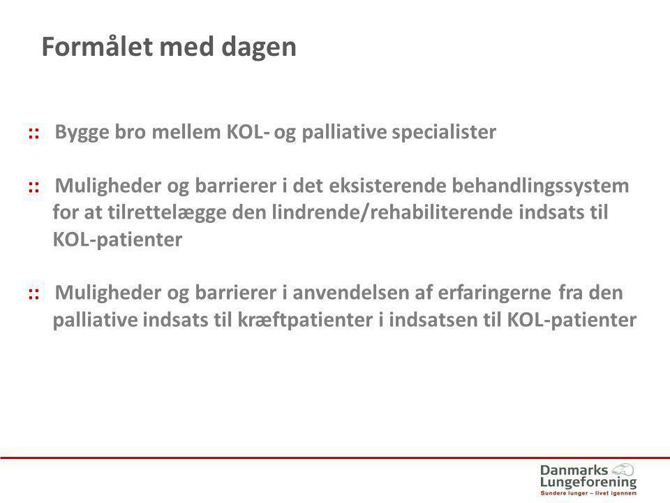 Formålet med dagen :: Bygge bro mellem KOL- og palliative specialister