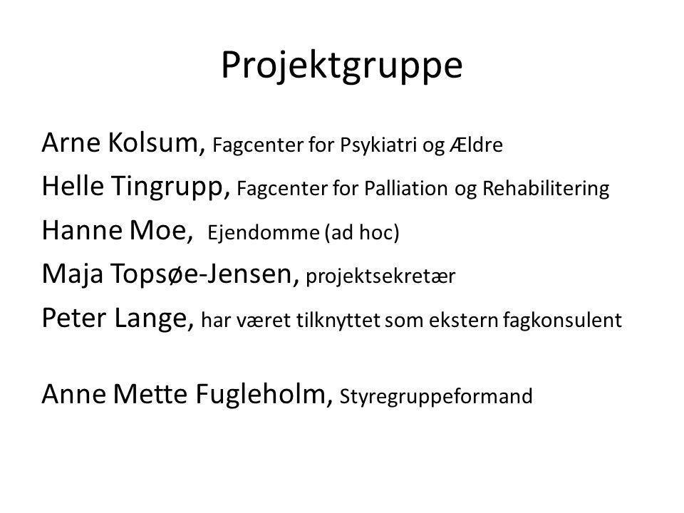 Projektgruppe