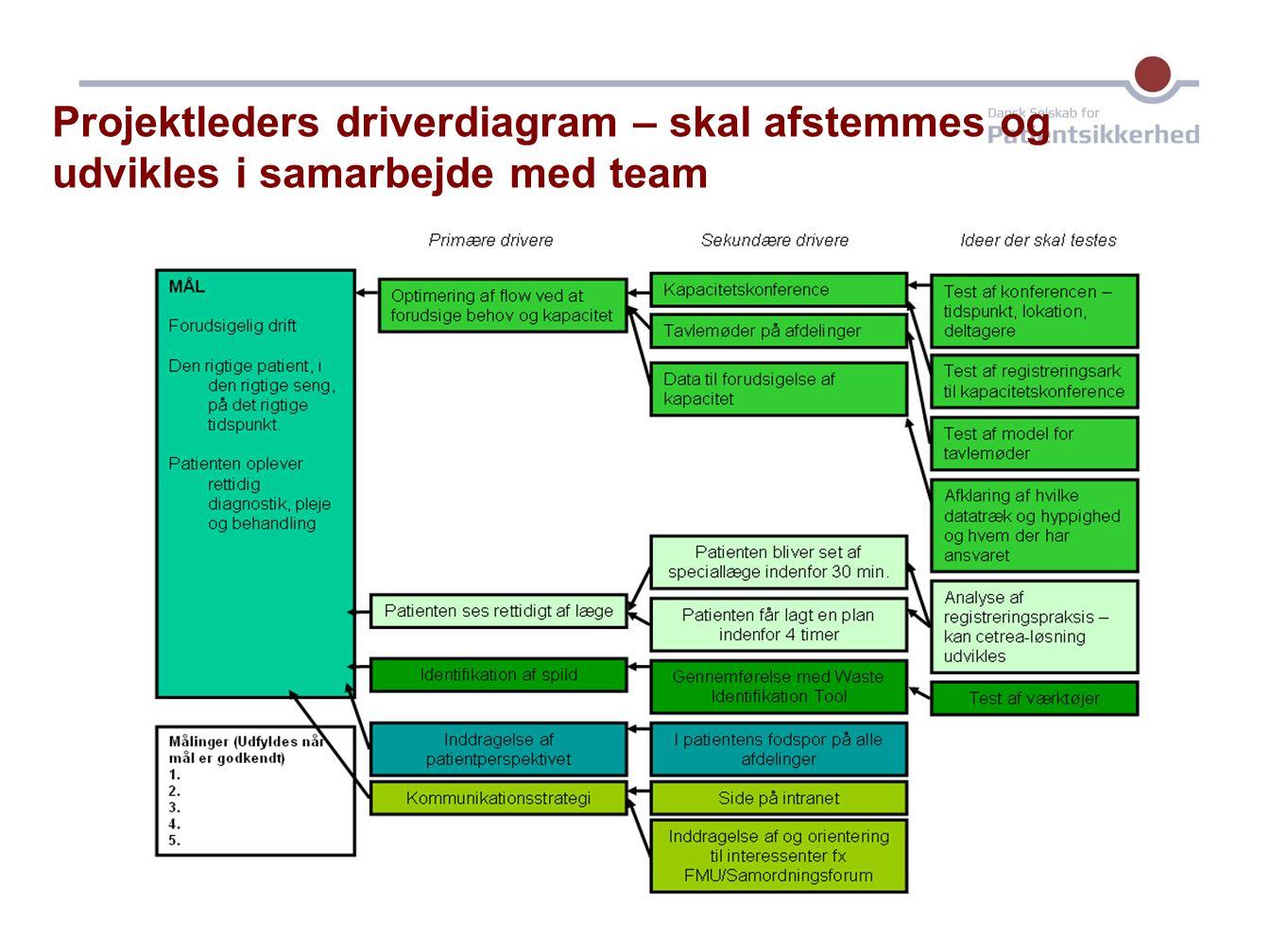 Projektleders driverdiagram – skal afstemmes og udvikles i samarbejde med team