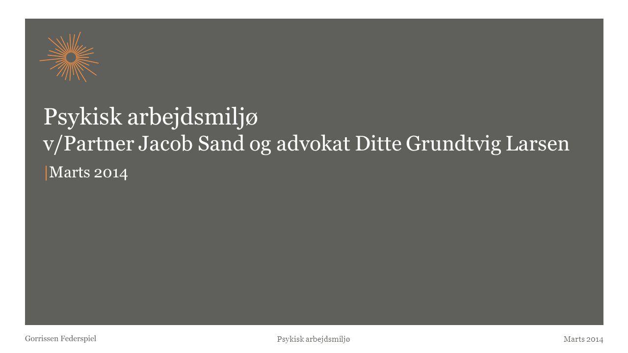 Psykisk arbejdsmiljø v/Partner Jacob Sand og advokat Ditte Grundtvig Larsen