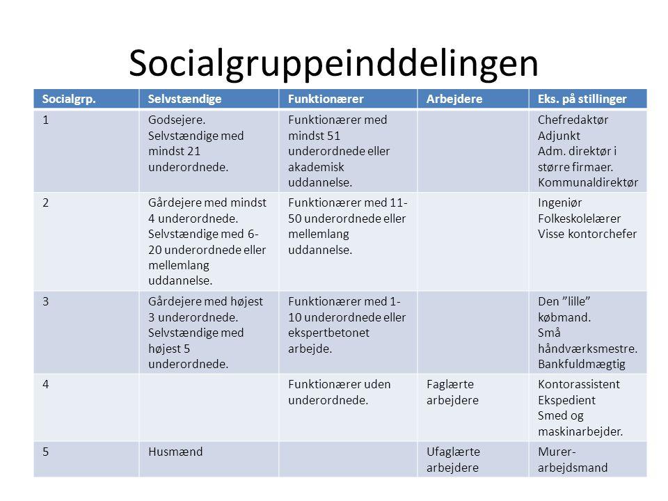 Socialgruppeinddelingen