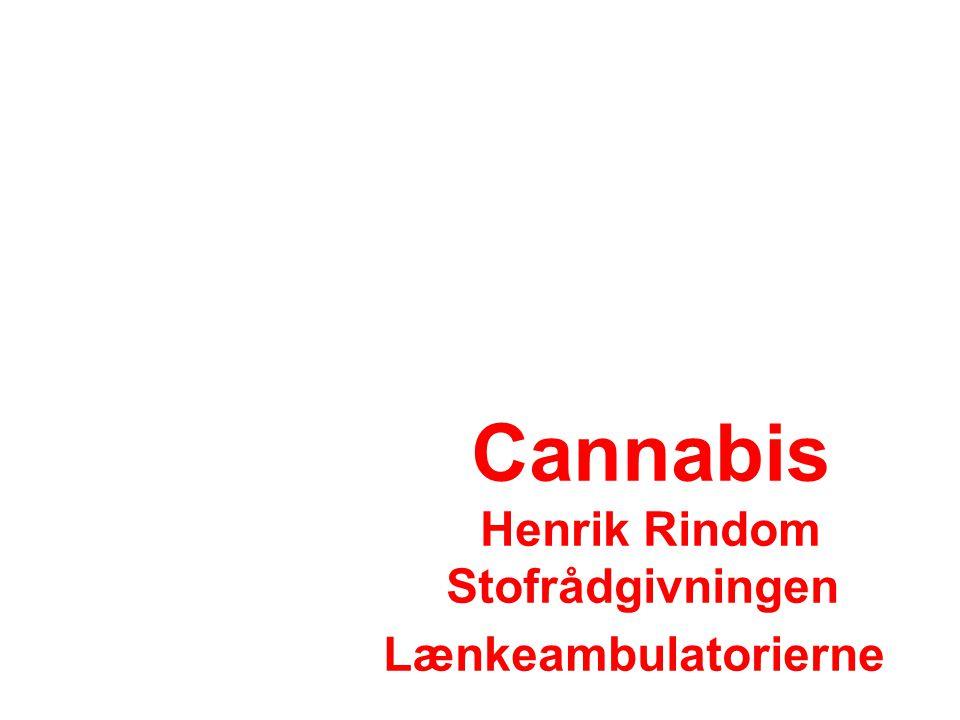 Cannabis Henrik Rindom Stofrådgivningen Lænkeambulatorierne