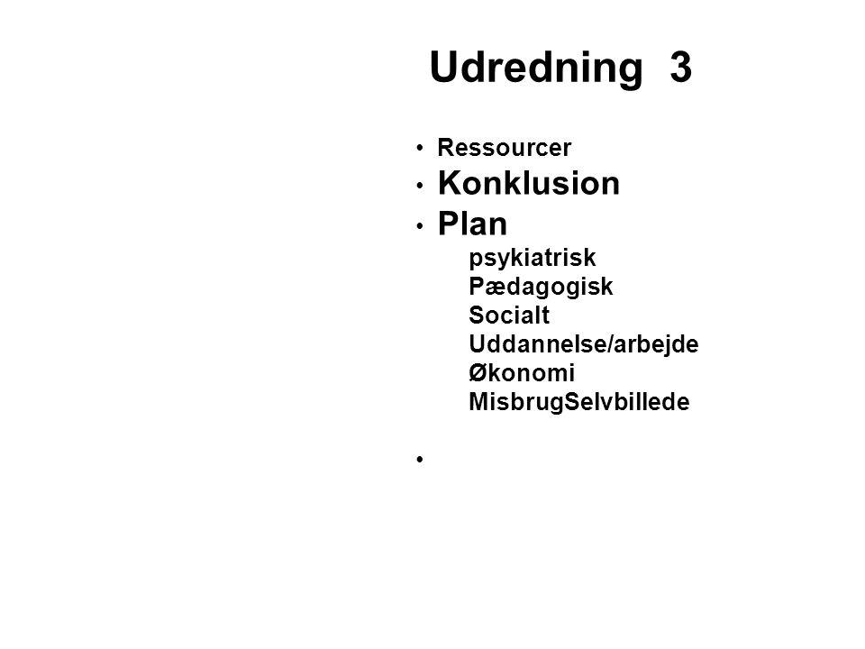 Udredning 3 Ressourcer Konklusion Plan psykiatrisk Pædagogisk Socialt
