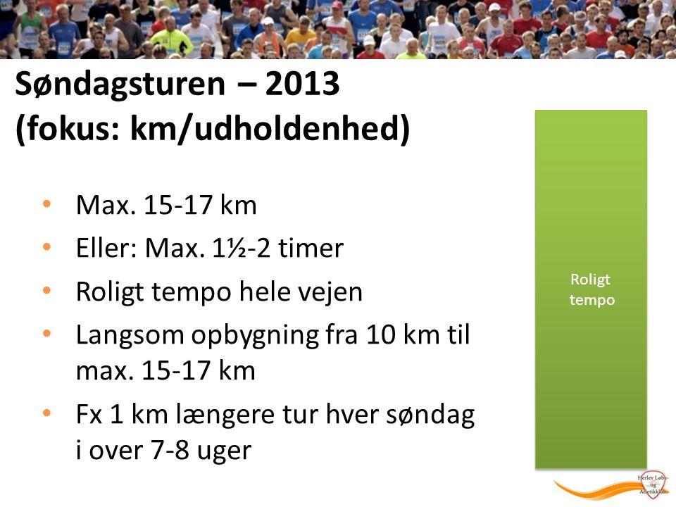 Søndagsturen – 2013 (fokus: km/udholdenhed)