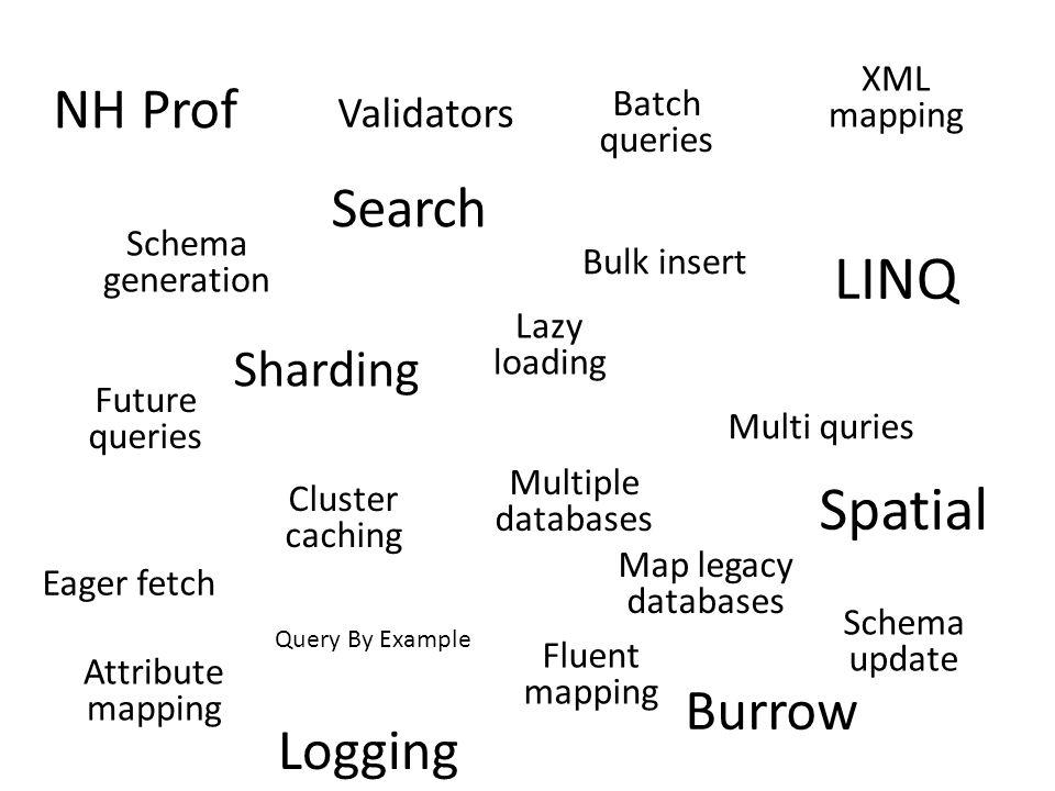 LINQ Spatial NH Prof Search Burrow Logging Sharding Validators