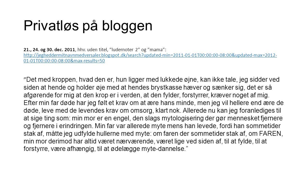 Privatløs på bloggen