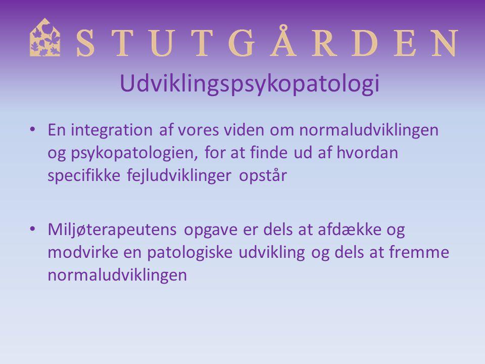 Udviklingspsykopatologi