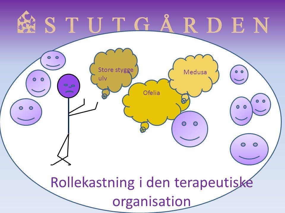 Rollekastning i den terapeutiske organisation