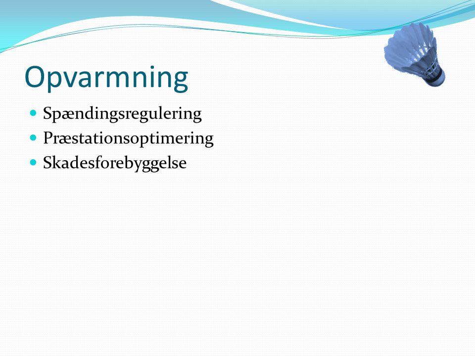 Opvarmning Spændingsregulering Præstationsoptimering
