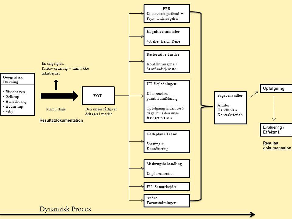 Dynamisk Proces PPR Undervisningstilbud + Psyk. undersøgelser