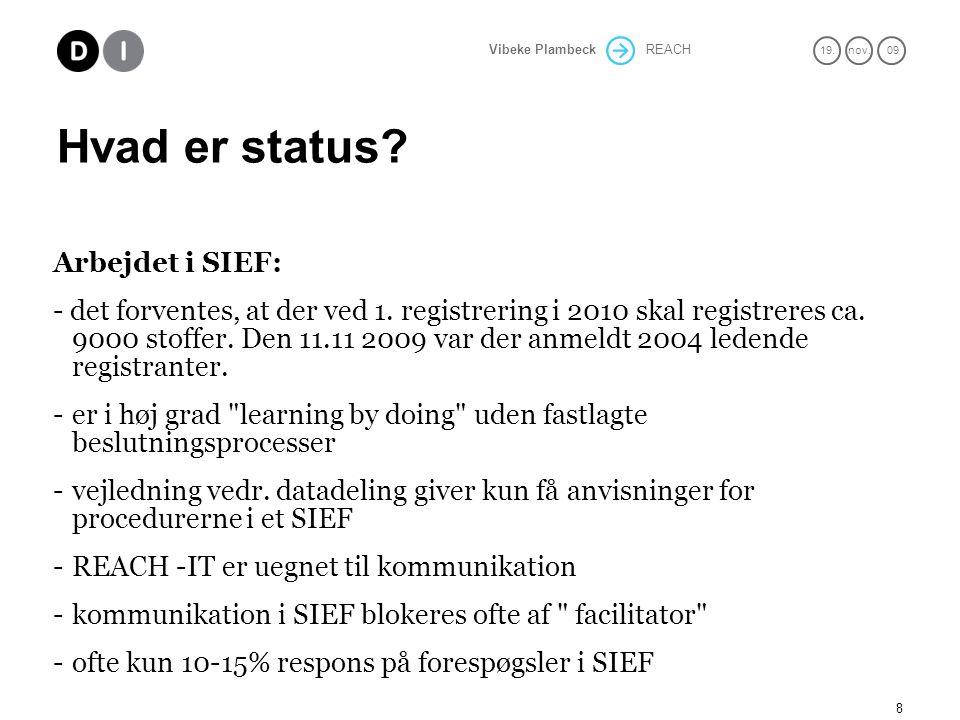 Hvad er status Arbejdet i SIEF: