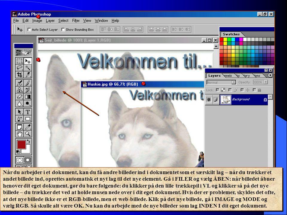 Når du arbejder i et dokument, kan du få andre billeder ind i dokumentet som et særskilt lag – når du trækker et andet billede ind, oprettes automatisk et nyt lag til det nye element.