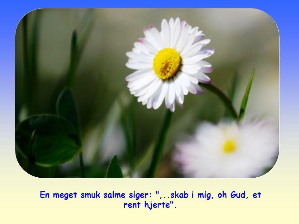 En meget smuk salme siger: ,..skab i mig, oh Gud, et rent hjerte .