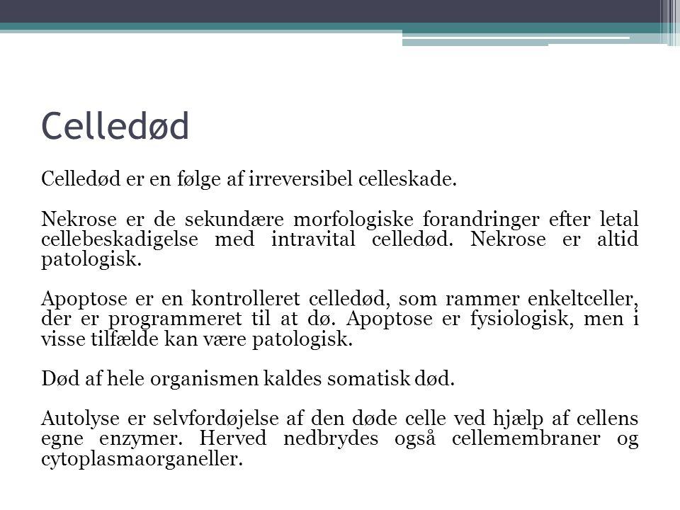 Celledød
