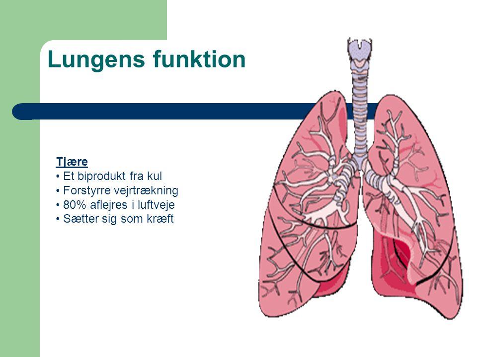 Lungens funktion Tjære Et biprodukt fra kul Forstyrre vejrtrækning
