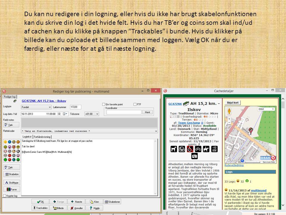 Du kan nu redigere i din logning, eller hvis du ikke har brugt skabelonfunktionen kan du skrive din log i det hvide felt.