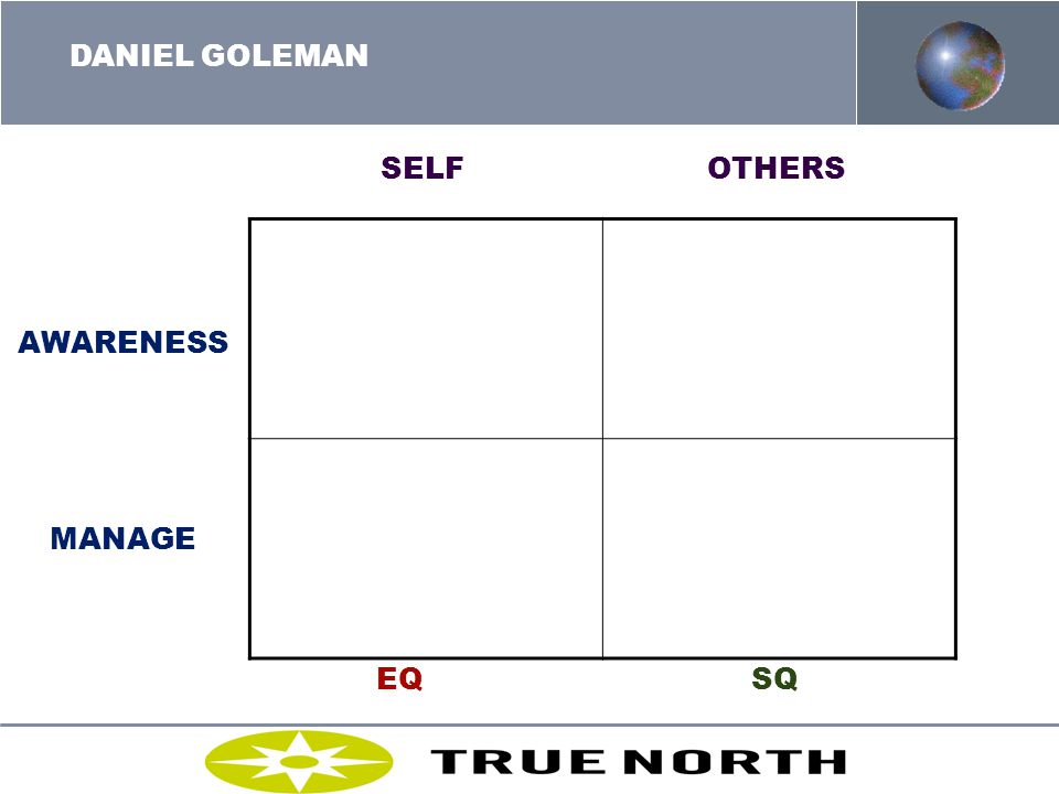 DANIEL GOLEMAN SELF OTHERS AWARENESS MANAGE EQ SQ MOLTKE-LETH