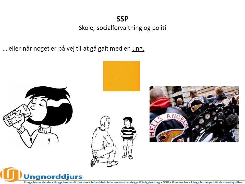 SSP Skole, socialforvaltning og politi