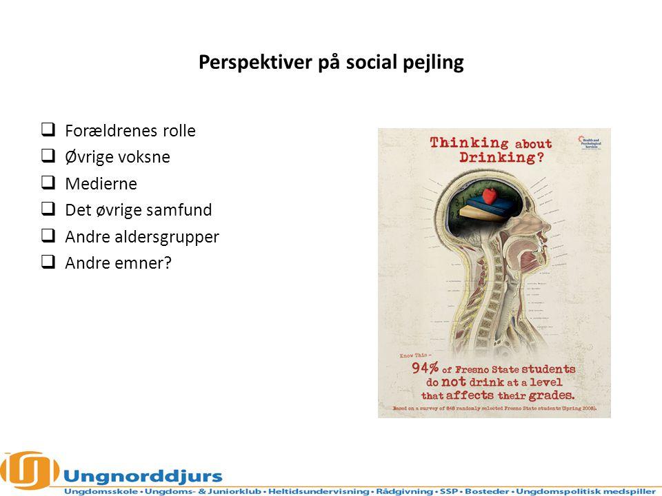 Perspektiver på social pejling