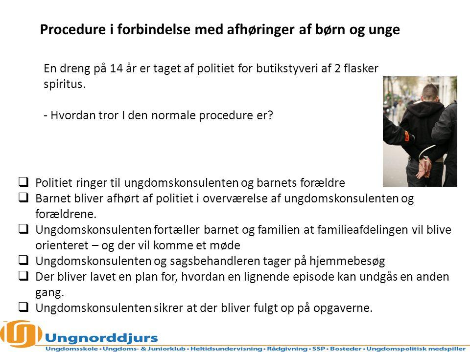 Procedure i forbindelse med afhøringer af børn og unge