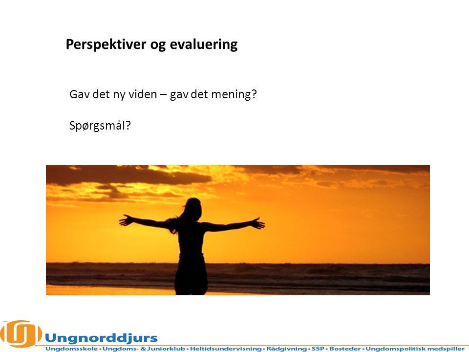 Perspektiver og evaluering