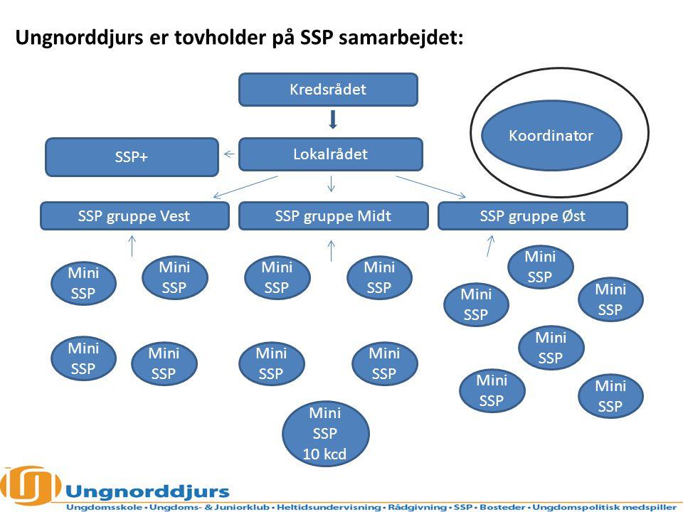 Ungnorddjurs er tovholder på SSP samarbejdet: