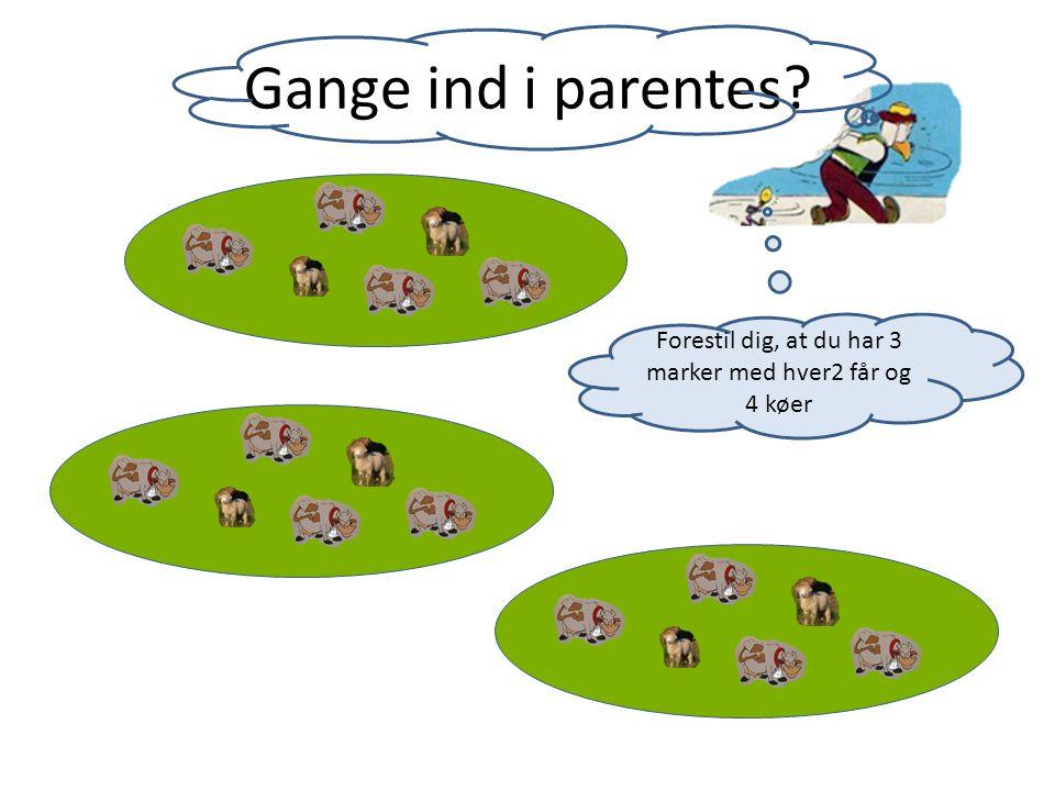 Forestil dig, at du har 3 marker med hver2 får og 4 køer