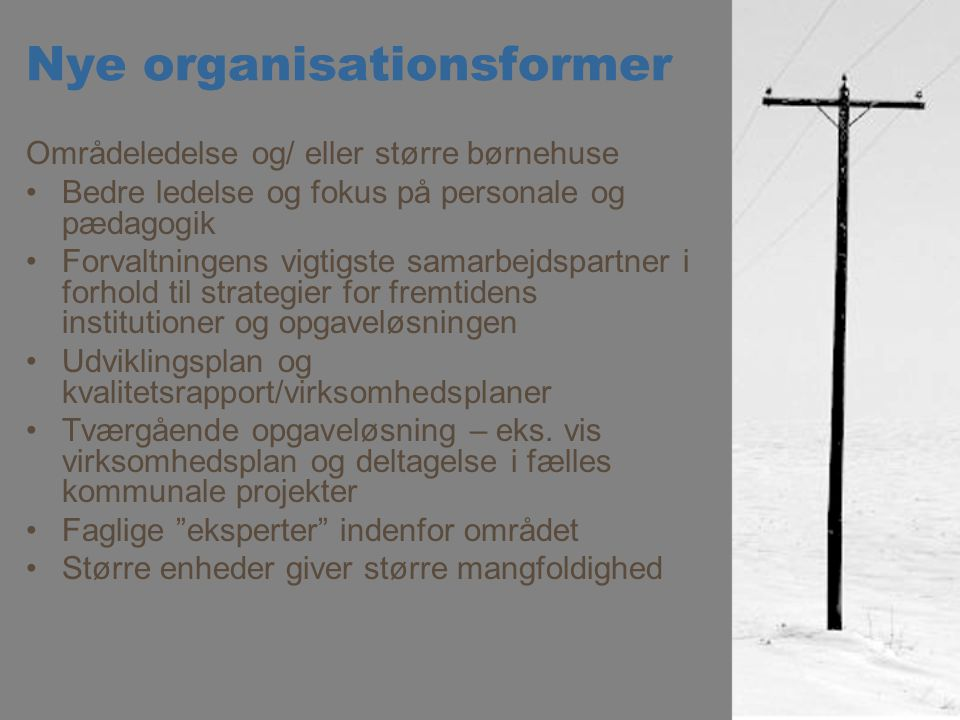 Nye organisationsformer