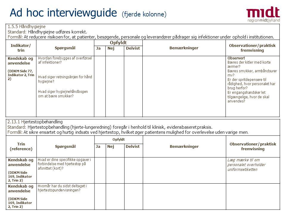 Ad hoc interviewguide (fjerde kolonne)